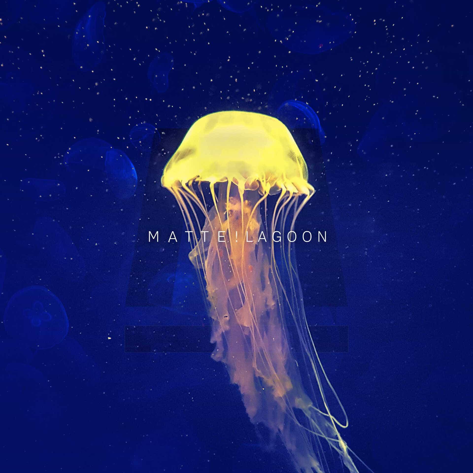 MATTE! - Lagoon