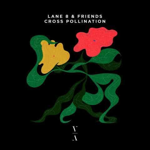 The artwork for the album Cross Pollination by Lane 8 & Friends